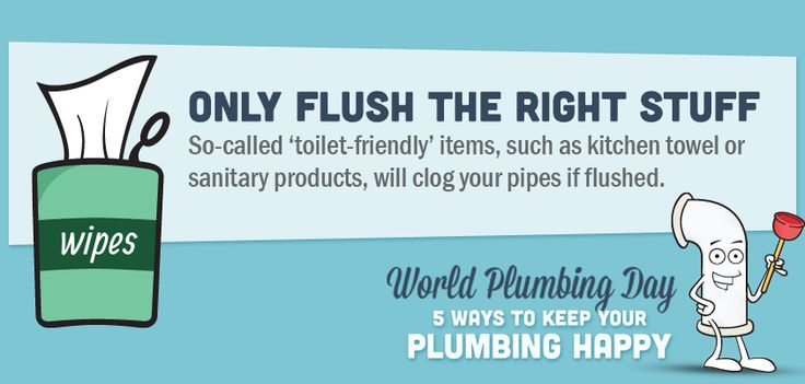 Only flush the right stuff #plumbing #tips #tricks #toilet #ideas #information #helpful #Home #DIY #information #graphic