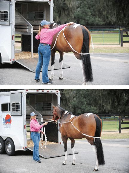 How to load a difficult horse by yourself