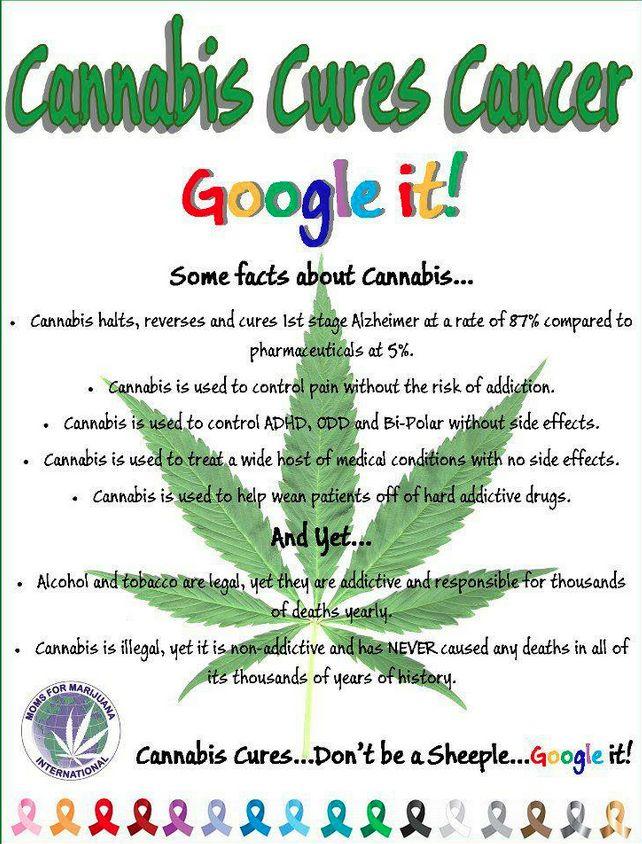 Cannabis, Cannabinoids and Cancer – The Evidence So Far ...
