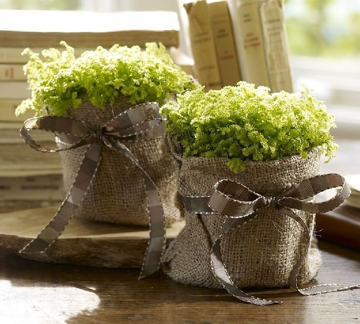 Cover your potted plants with burlap and a ribbon...sweet