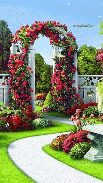 17 mejores ideas sobre plantas enredaderas con flores en - Jardines y paisajes ...