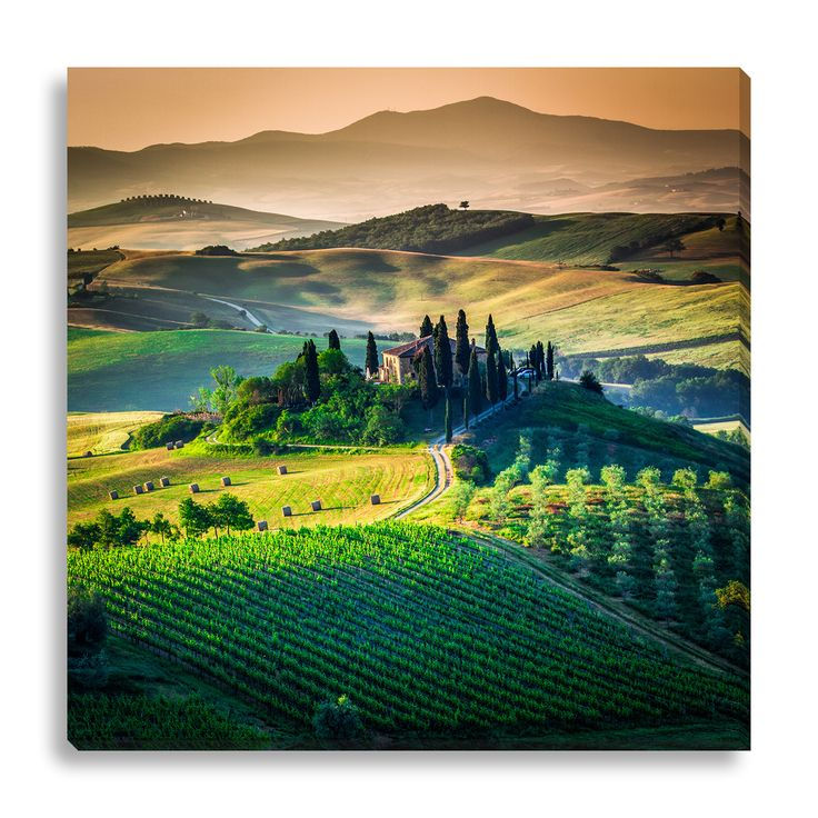 Best Tuscany In Art Images On Pinterest Landscapes Landscape - Tranquil photos capture the beauty of tuscanys countryside
