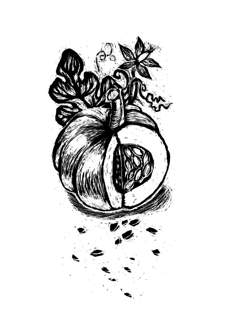 pumpkin etching illustration