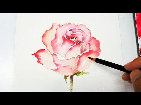 25 b sta id erna om watercolor rose p pinterest for Easy watercolor tutorial