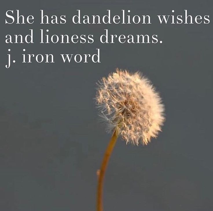 Dandelion wishes and lioness dreams. [j. iron word]
