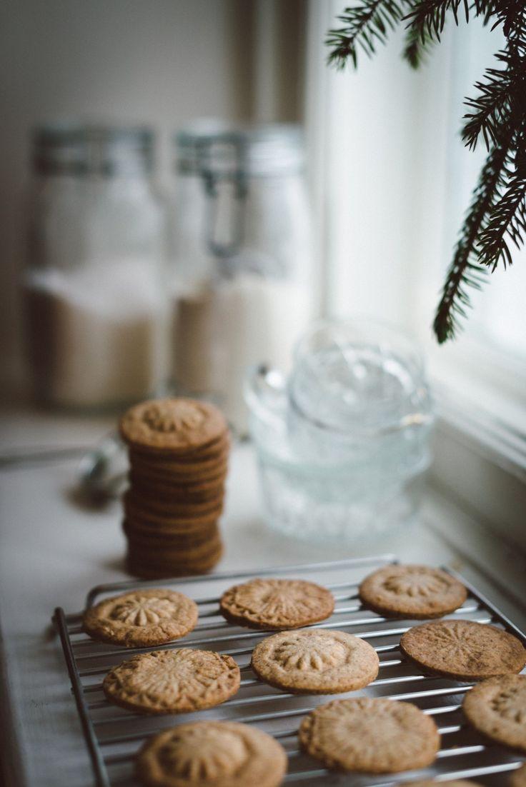 Babes_in_Boyland-winter_cookies-5