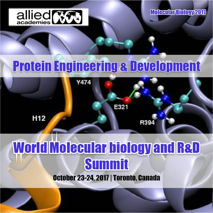 Protein Engineering & Development ================================= #Proteinengineering is the process or a procedure of developing useful or valuable proteins. It is an interdisciplinary subject in the field of life sciences in this study of various kind of protein structures, interactions, #protein folding and also designing of protein principles can be done. There are to two are present for protein engineering those are A. Rational protein design B. Direct evolution design