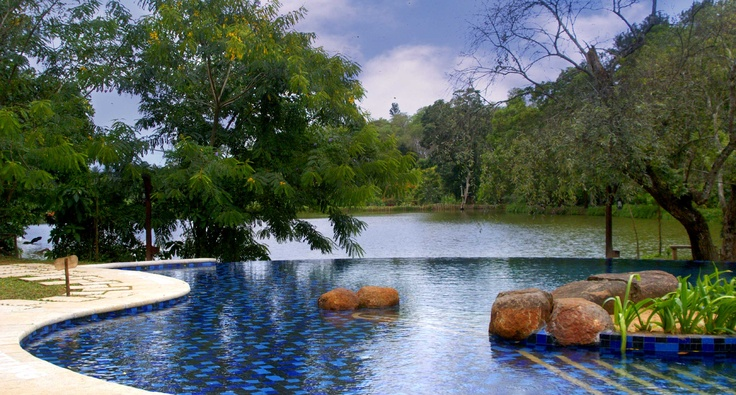 Want a place to relax? Head to Orange County, Coorg