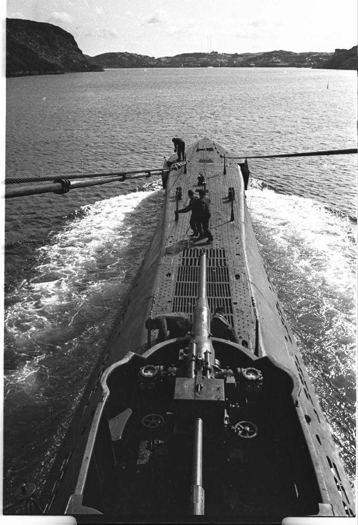 Sovietic Navy submarine gun. North Europe. WW2