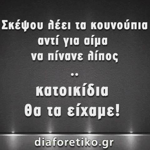 Κατοικίδια  (εικόνα by @eirini__ant96 ✨) #greekquotes #greekpost #greekposts #greekquote #ελληνικα #στιχακια