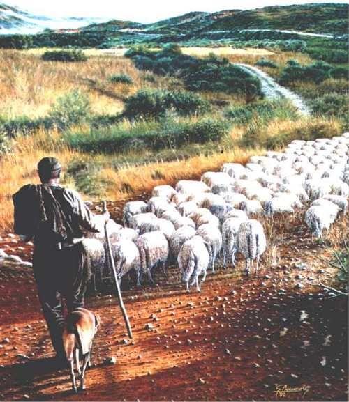 Introdotto in nuovi territori, il cane si è accoppiato con gli esemplari selvatici autoctoni dando così vita ai diversi ceppi che, negli anni, hanno prodotto le razze più antiche, quali i levrieri, i cani da pastore, i bracchi ed i molossi