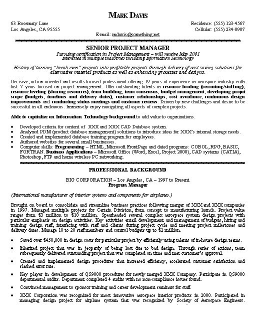 The 25+ best Project manager resume ideas on Pinterest Project - programming resume examples