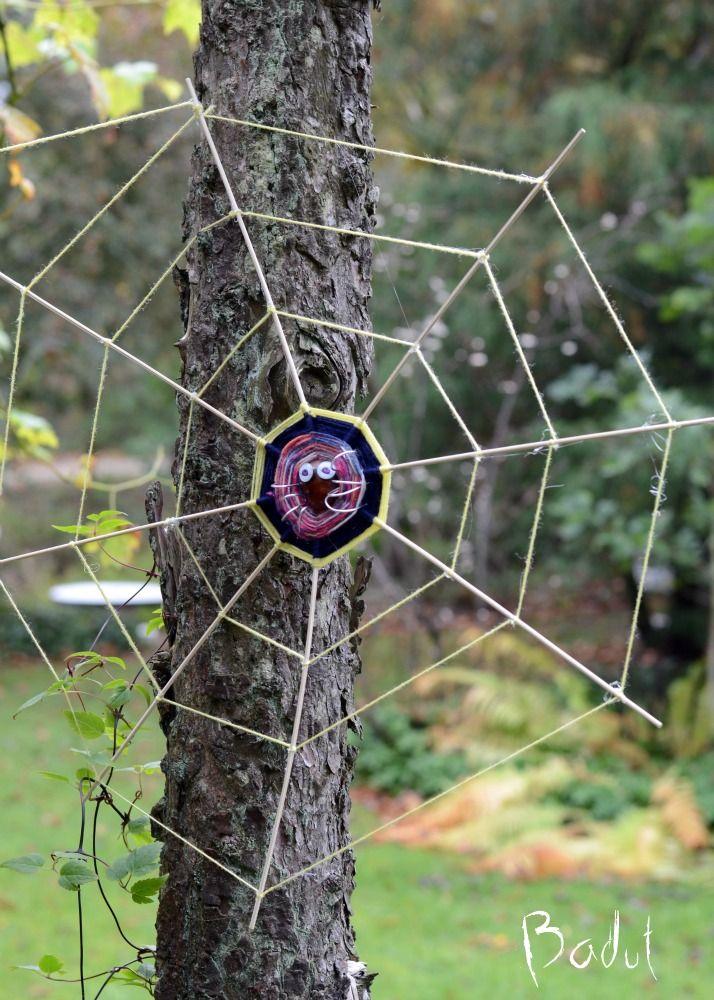 Kæmpe kastanje edderkop i net