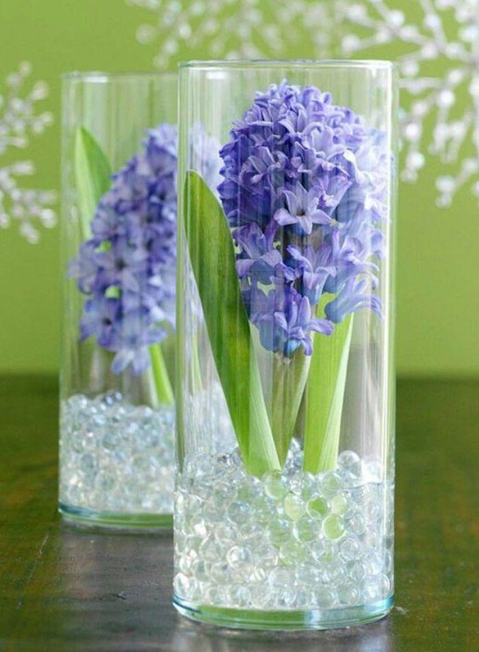 Blumenzwiebeln im Glas mit Dekosteinen,Hyazinthe