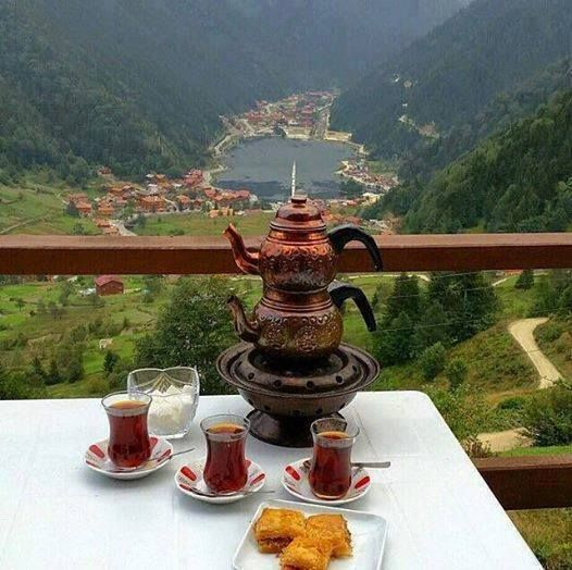 North of Iran ,Mountain Skirts and an exquisite traditional tea in a summer afternoon. Everyone's welcomed with Iranian hospitality :)