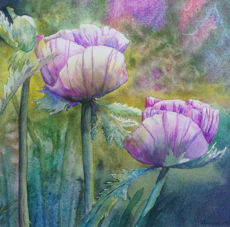 Alan's poppies Watercolour by Heather Plowman