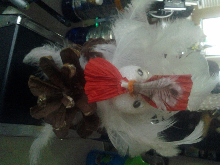 White Chicken feathers! We had fun making Turkeys for Thanksgiving.