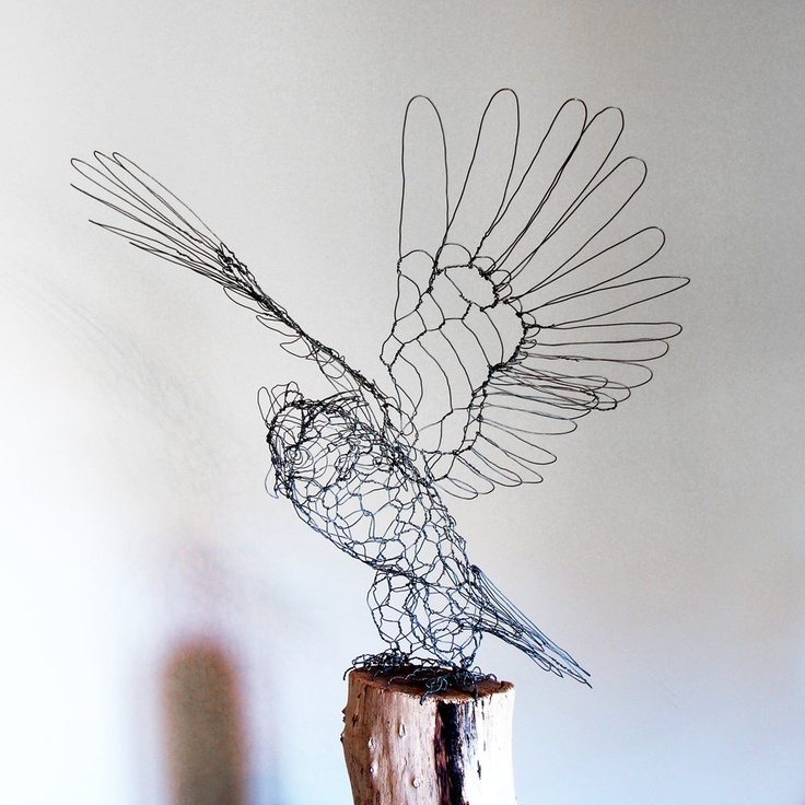 17 best images about chicken wire sculptures on pinterest for How to make a 3d bird sculpture