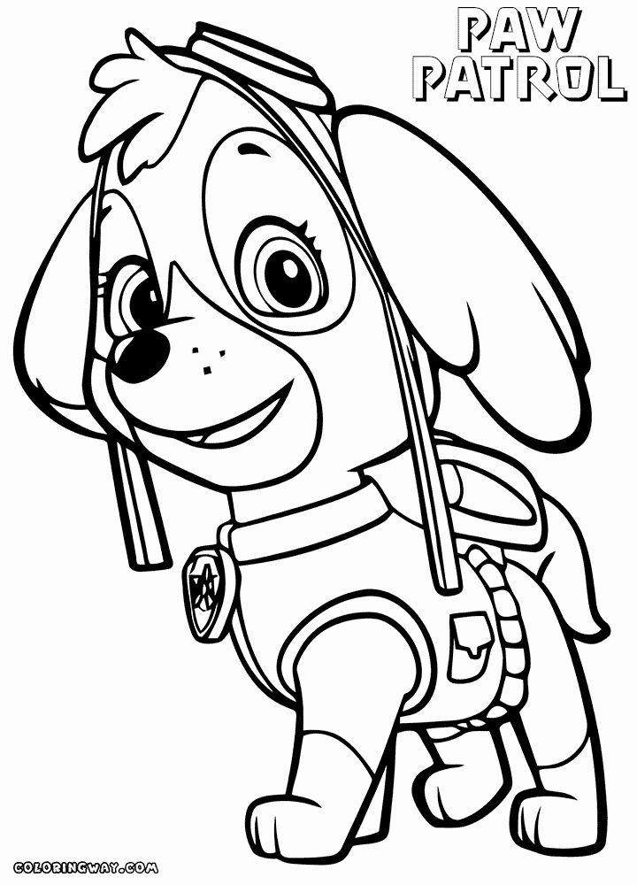 Colouring Pages Paw Patrol Skye