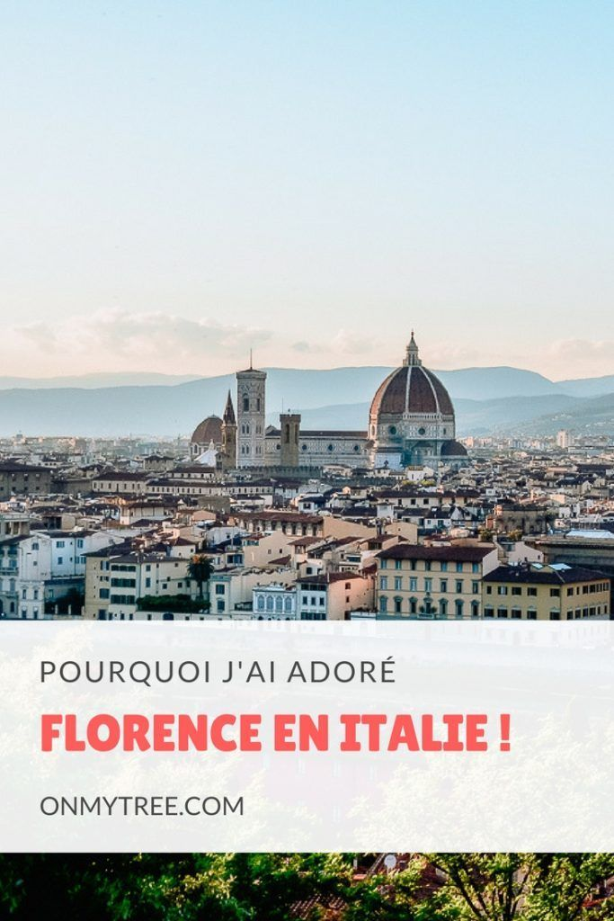 Why I loved Florence in Italy ! Pourquoi j'ai adoré Florence en Italie #Firenze #Florence #Toscane #Tuscany #Italie #Italia #Italy #Voyage #Travel #Tourism
