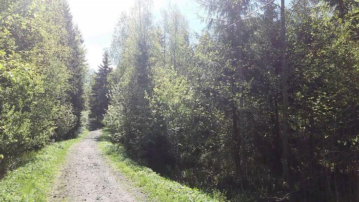 Koulujen päättäjäislauantai - Mouhijärven kirkonkellot 3.6.2017