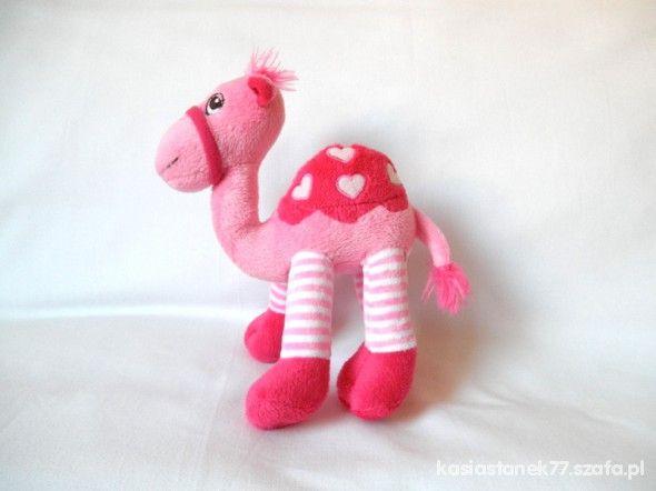 różowy wielbłąd