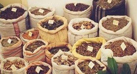 Peruánské byliny a bylinky | Uncaria ČR