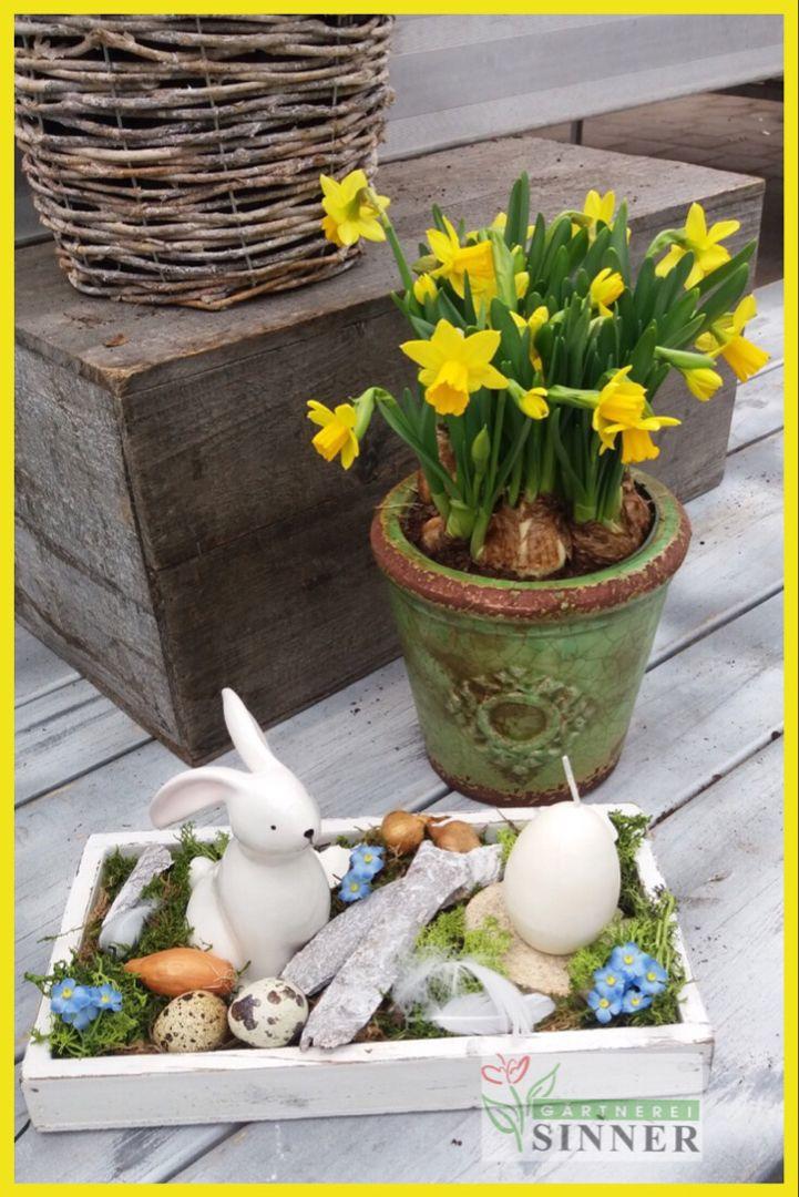 Osternest Strau/ßenei mit frischen Fr/ühlingsblumen und Hasen