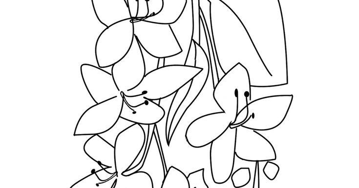 ลายเส นดอกไม อาเซ ยน Aec Flowers Clipart ท นำมาให ดาวน โหลดน เป น ลายเส นดอกไม ประจำชาต ในกล มประชาคมอาเซ ยนท ง 10 ประเทศ จะใช ฝ ก งานฝ ม อเด กเล ก