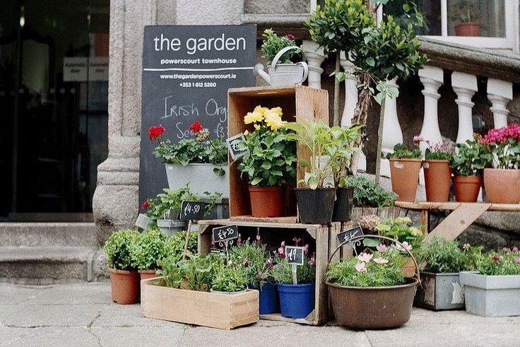 31 best tiendas de flores images on pinterest flower - Decoracion fiesta jardin ...