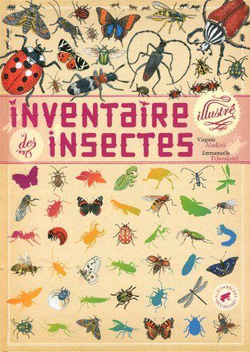 Inventaire illustré des insectes: Amazon.fr: Virginie Aladjidi, Emmanuelle Tchoukriel: Livres