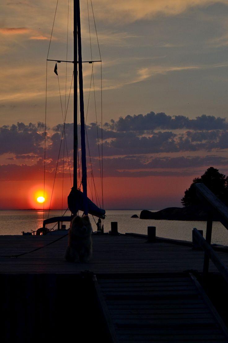Isäntä palaa auringon laskiessa kalareissulta ja uskollinen ystävä odottaa kiltisti laiturilla ♥