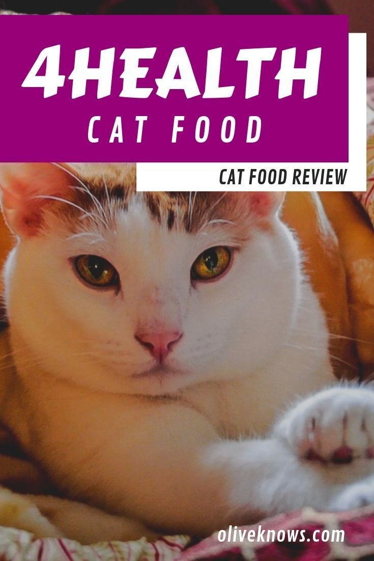 4health Cat Food Review Is This Food Cat Worthy Cat Food