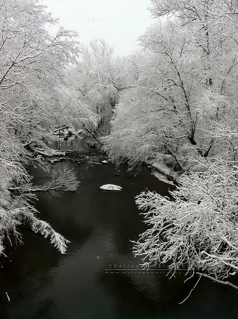 Creek in Winter Snow Scene