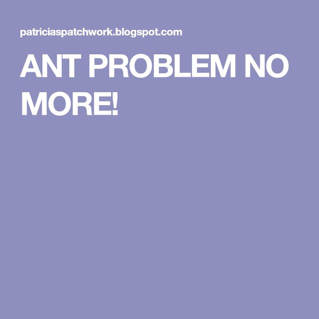 ANT PROBLEM NO MORE!