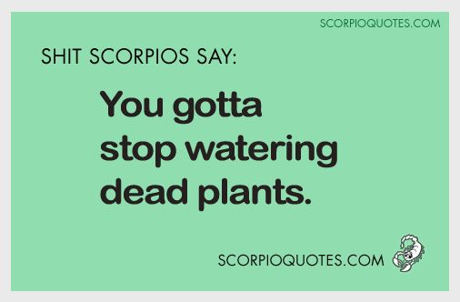 You Gotta Stop Watering Dead Plants