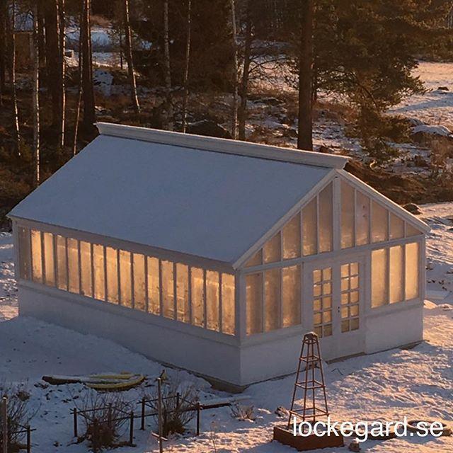 Mysigt adventsljus i växthuset.☀️#lockegard #advent