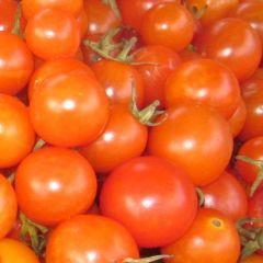 Tomatoes - Hawthorn Farm Organic Seeds