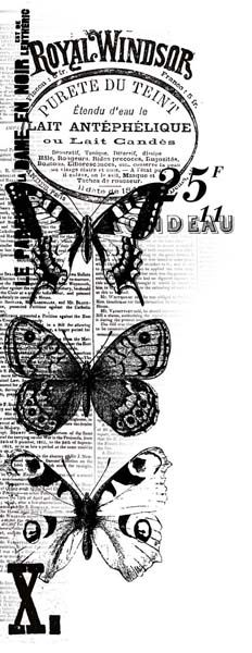 Kaisercraft - Texture - Clear Acrylic Stamp - Windsor at Scrapbook.com Butterflies