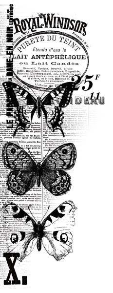 Kaisercraft - Texture - Clear Acrylic Stamp - Windsor at Scrapbook.com Butterflies