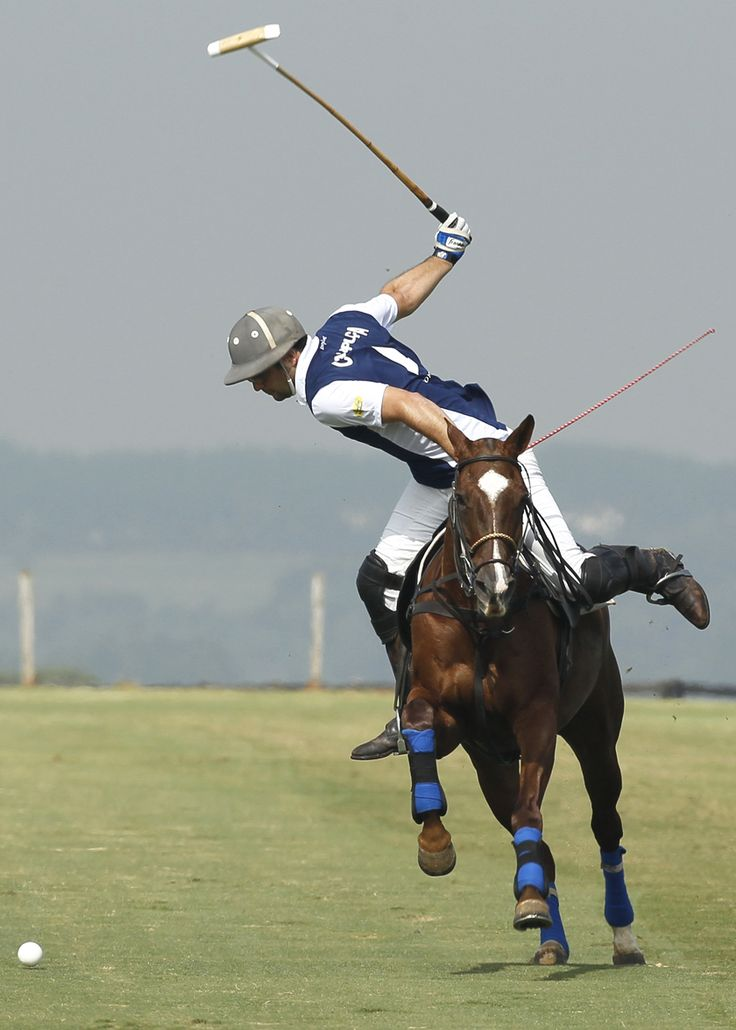 wide open Polo pony, Sport of kings, Polo team