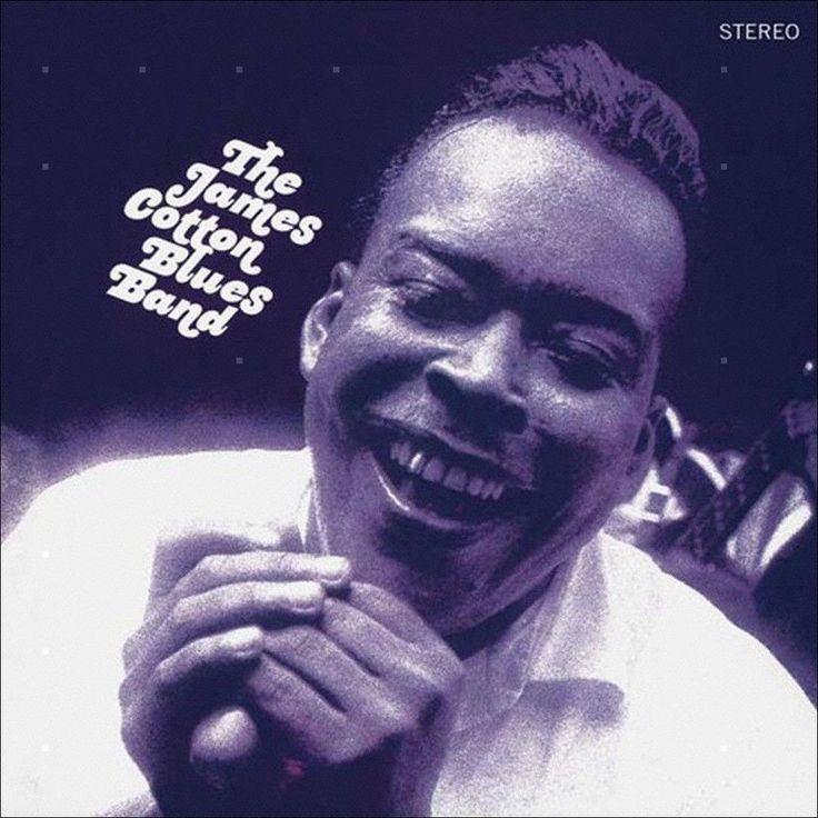 The James Cotton Blues Band