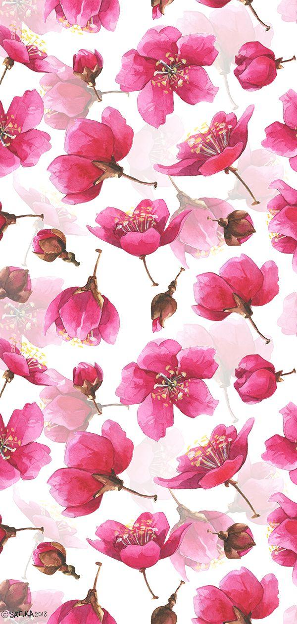 Watercolor pink pattern with Sakura tree bloom in …