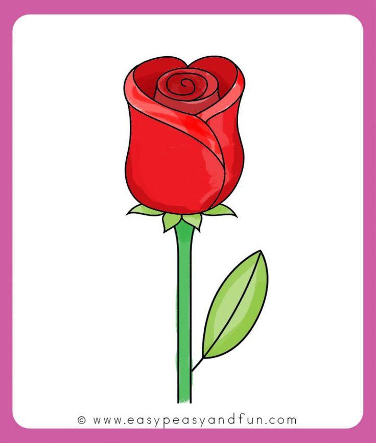 rose drawing easy flower step draw beginners drawings simple flowers sketch roses basic tutorial printable detailed clipartmag stem petals enchanted