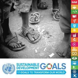 Sdg booklet 2017 eng  The 2030 Agenda for Sustainable Development offers a better future for billions of people around the world and for our planet as a whole. The 17 Sustainable Development Goals (SDGs) which were unanimously adopted by 193 countries, set a new universal standard for development which aims to ensure that no one is left behind. The targets and indicators behind the goals provide a benchmark for measuring success.