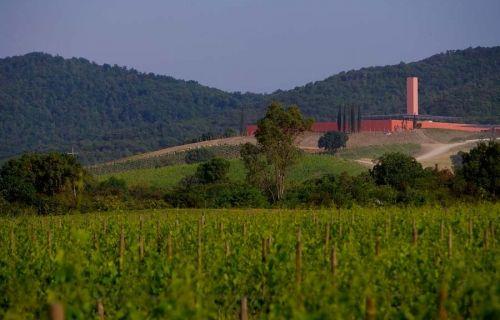 #cantina #cellar #vinery Tenuta Rocca di Frassinello – Panerai Family Gavorrano (Grosseto) - Design: Renzo Piano