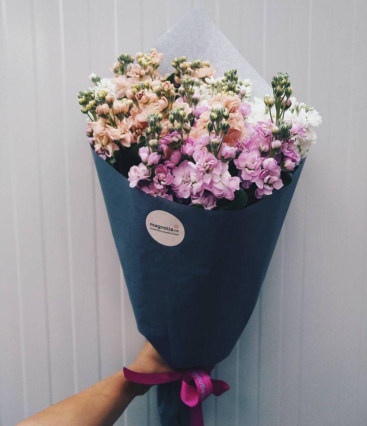 Buchet cu Matthiola pentru o zi de vară colorată.   Matthiola bouquet. Lovely colors for a summer day.