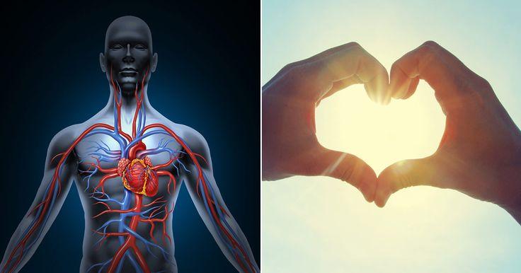 Hälsotips: Därför är vitamin K2 viktigt för hjärt- och kärlhälsan