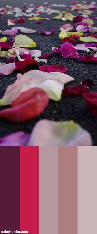 Street Petaler 2 Color Scheme
