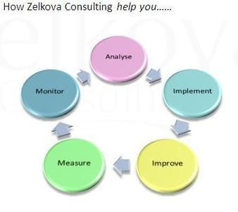 Zelkova Consulting: Business Improvement & Development
